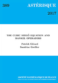 The Cubic Szego Equation and Hankel Operators cover image