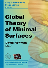 Global Theory of Minimal Surfaces cover image