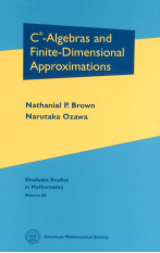 $C^{*}$-Algebras and Finite-Dimensional Approximations