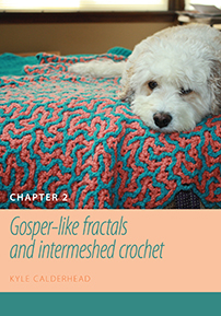 Figuring Fibers: Gosper-like Fractals and Intermeshed Crochet (Chapter 2) cover image