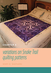 Figuring Fibers: Variations on Snake Trail Quilting Patterns(Chapter 4) cover image