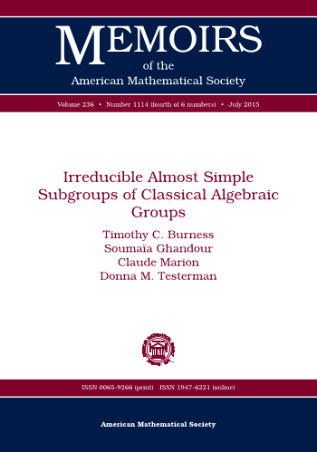 Irreducible Almost Simple Subgroups of Classical Algebraic Groups cover image