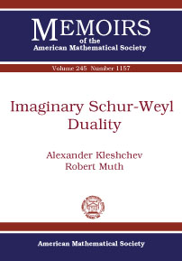 Imaginary Schur-Weyl Duality cover image