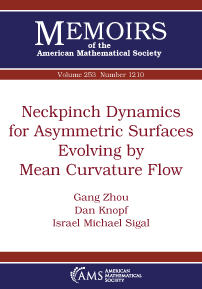 Neckpinch Dynamics for Asymmetric Surfaces Evolving by Mean Curvature Flow cover image