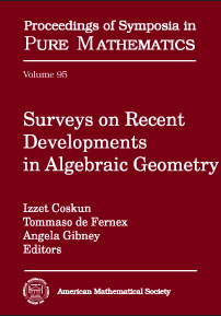 Surveys on Recent Developments in Algebraic Geometry cover image