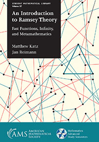 An Introduction to Ramsey Theory: Fast Functions, Infinity, and Metamathematics cover image