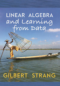 Linear Algebra and Learning from Data cover image