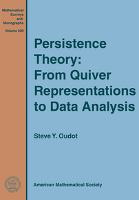 Persistence Theory: From Quiver Representations to Data Analysis cover image