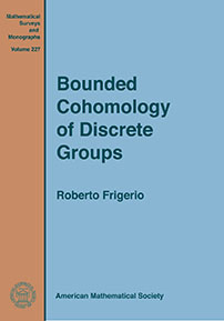 Bounded Cohomology of Discrete Groups cover image